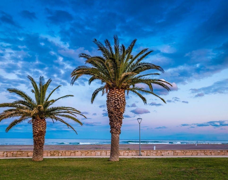 alquiler-vacaciones-miami-platja-apartamentos-playa-familia